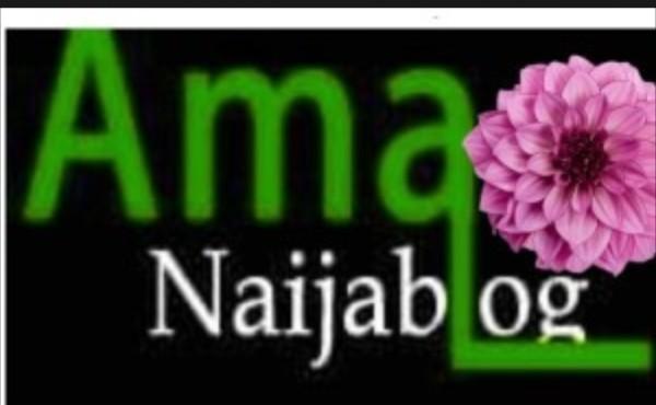 Ama Naija Blog Photo