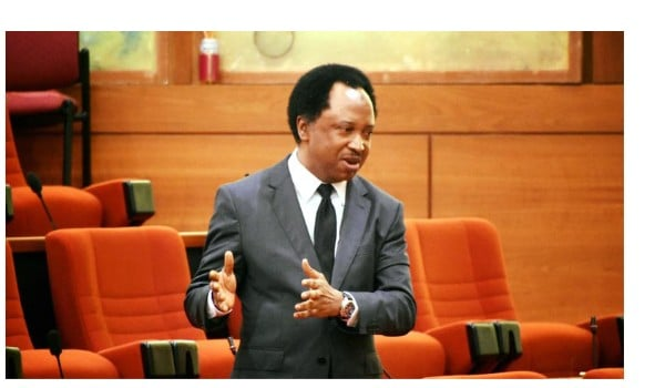 Stop Travelling In Vehicles Carrying The Inscription Of Churches And Mosques -Senator Shehu Musa Advises Nigerians