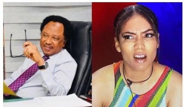 BBNaija: I Won't Eat For One Day – Shehu Sani Speaks On Maria's Eviction…
